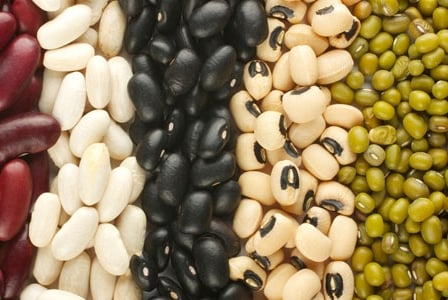 Celebrate the Humble Bean Because Today is Eat Beans Day!