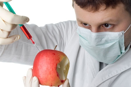 Do We Really Need Genetically Modified Apples?