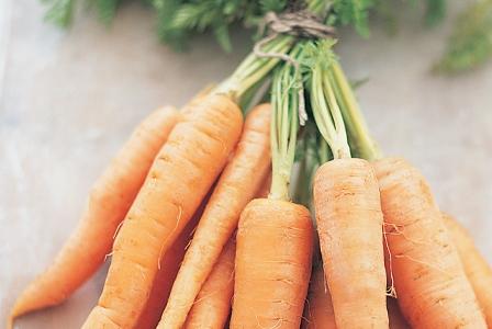 Festival of Carrots!
