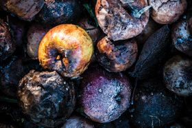 Put Food Waste on the Chopping Block