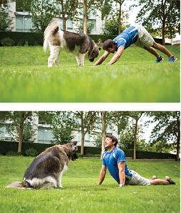 Downward Dog to Upward Dog