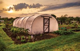 Organic and Biodynamic Farming