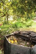 Dishing Up the Dirt About Compost