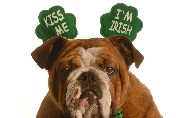 7 Ways to Go for the Green This Paddy's Day
