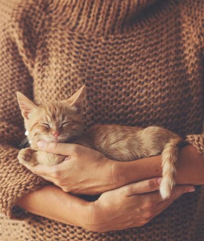 Surprising Health Benefits of Pets