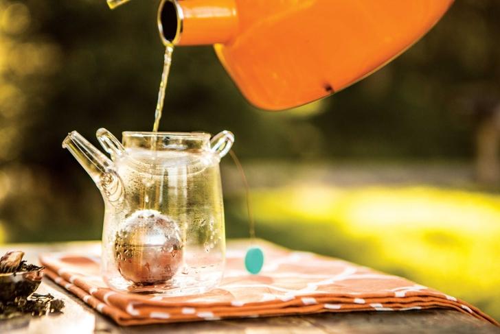 4 Detoxifying Herbs