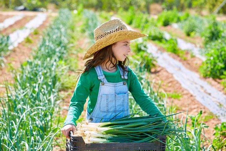 Grow Kids' Appreciation for Local Food
