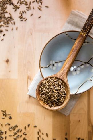 4 Unbeatable Detox Herbs