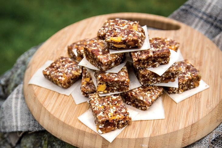 Spiced Date Nut Energy Squares