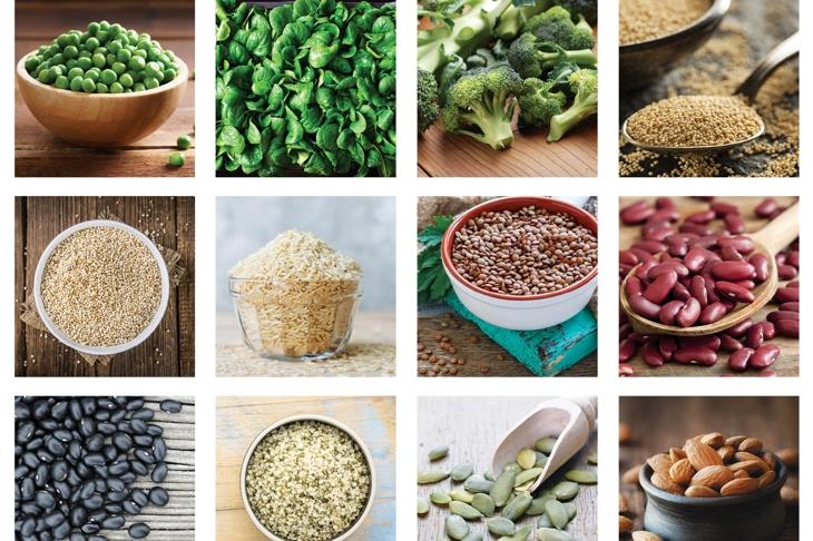 Vegan Protein Cheat Sheet