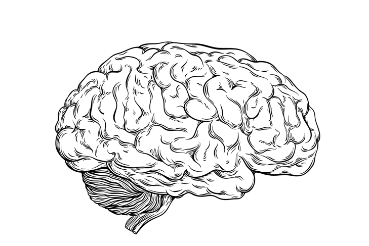 Can We Rewire Our Brains?
