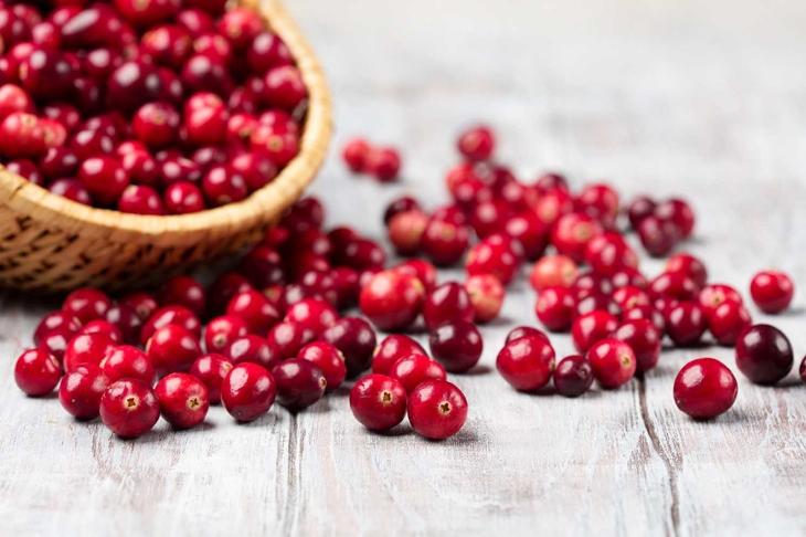 Harvest fresh red cranberries in wicker basket, selective focus. Autumn concept