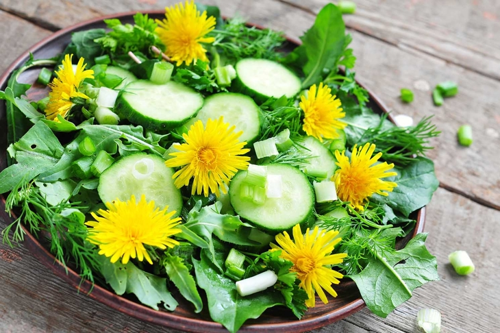 Fresh salad with cucumber, rucola, green onion and dandelion's flowers