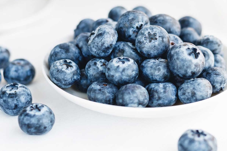 Blueberries in a white plate on a white background