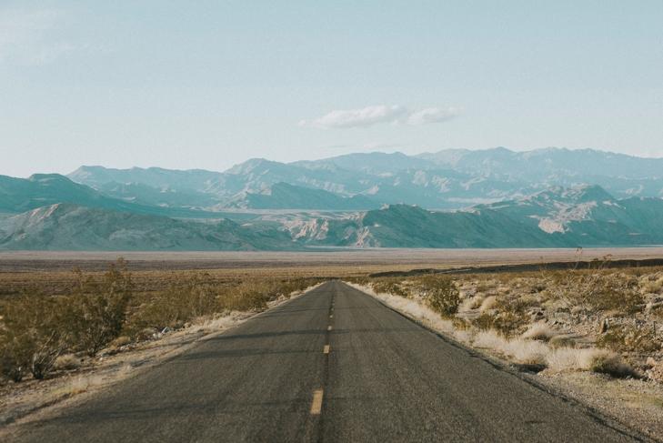 The Ultimate Vegan Road Trip