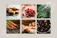 Top 6 Kids' Vitamins and Minerals