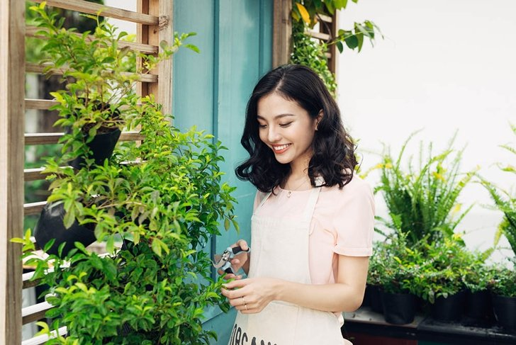 Cute asian woman gardener cutting plants with garden scissors in greenhouse