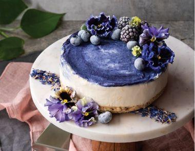Blue Pea Swirl Cheesecake