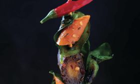 Carrot and Lime Leaf Kebabs with Lemongrass and Caraway Seeds