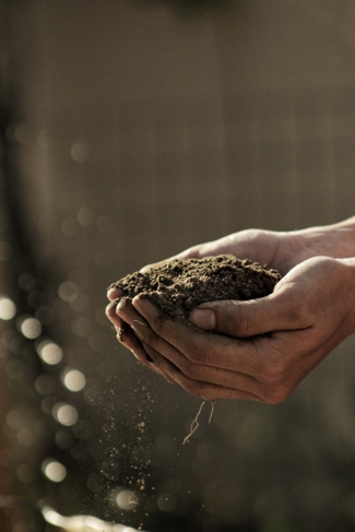 Farming to Feed the Planet