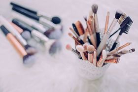 Are There Bugs In Your Beauty Bag?