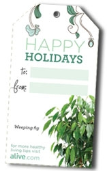 alive gift tags