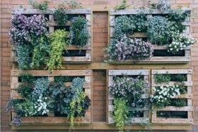 10 Reasons to Embrace Planted Walls