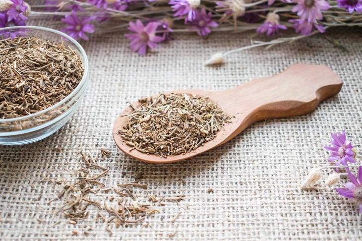 10 Relaxing Benefits of Valerian