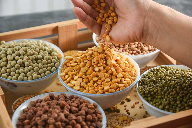 Pulses mix, Various sources of vegetable protein beans, lentils, peas, chickpeas, mung bean in bowls. Indian Pulses uncooked , healthy balanced diet for vegans, vegetarians. Legumes dal daal in hand