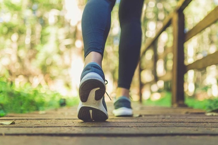 Close up of female legs with running shoes on wooden footpath in woods. Nature and sport healthy lifestyle concept.