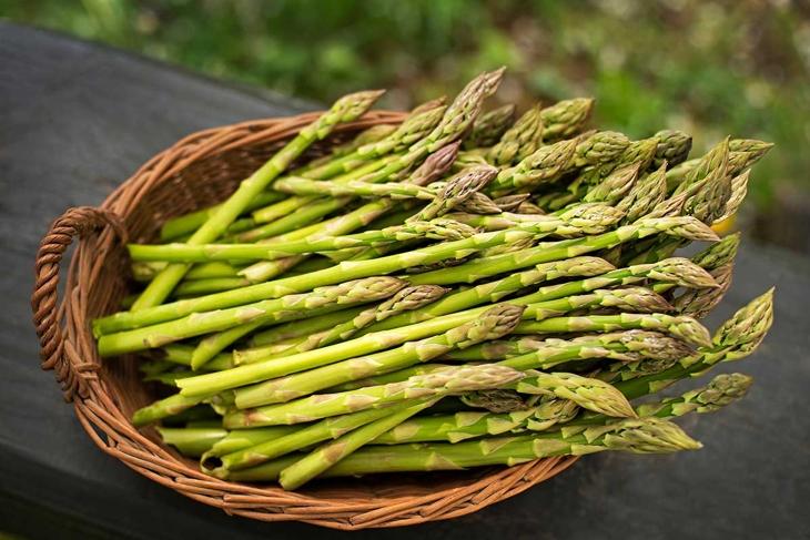 Asparagus. Fresh Asparagus. Green Asparagus in basket.