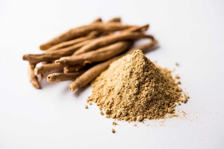 Ashwagandha / Aswaganda OR Indian Ginseng is an Ayurveda medicine in stem and powder form. Isolated on plain background. selective focus