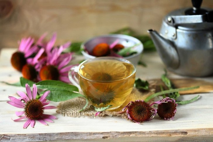 Selective focus. Echinacea tea in a cup. Echinacea flowers. Teapot and a cup of tea.